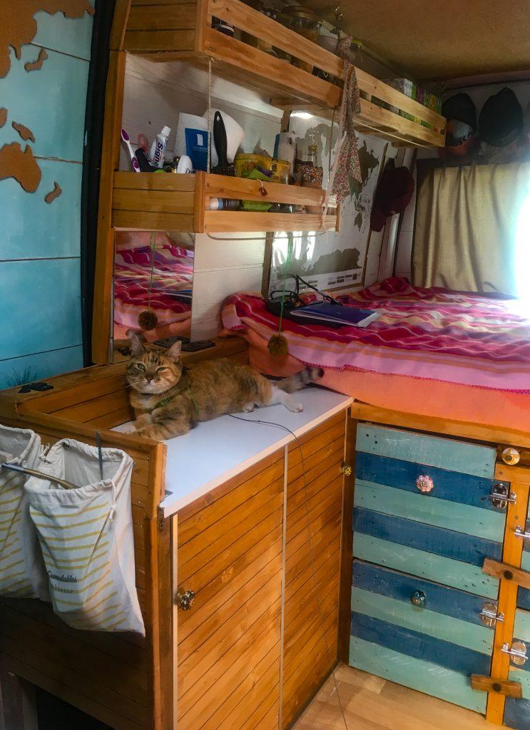 voyager en van avec son chat
